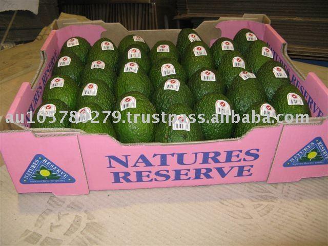 Fresh Avocadoes