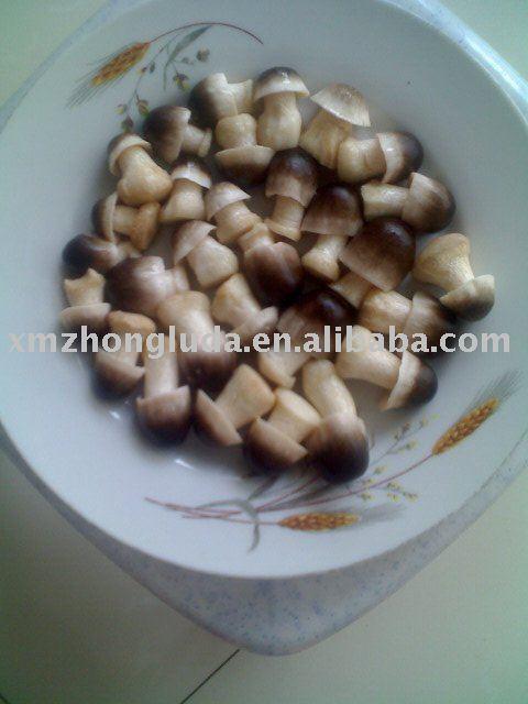 canned straw mushroom peeled