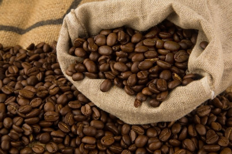 Cocoa Seeds For Sale Suppliers Exporters On 21food Com