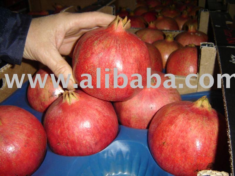 """Hejaz (Hicaz) Pomegranate"""