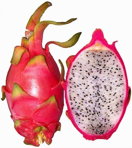 Fresh Dragon Fruits