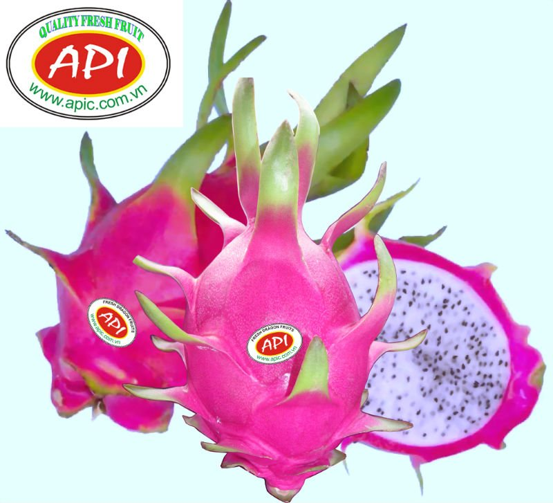 Dragon Fruit, Red dragon fruit, fresh dragon fruit