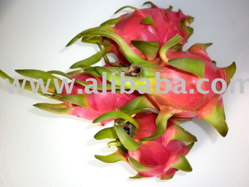 Fresh Dragon Fruit (Pitahaya)