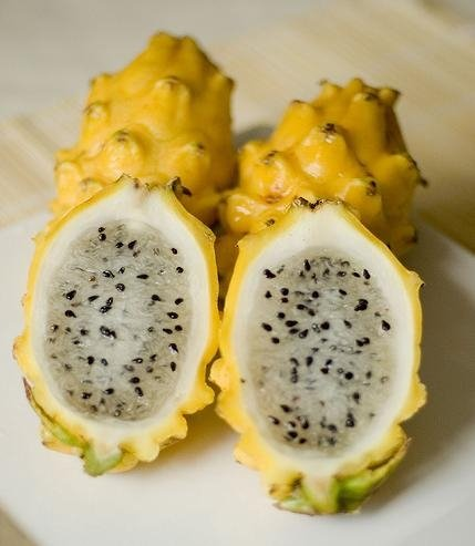 yellow dragon fruit suppliers,exporters on 21food.com