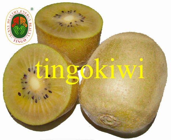 Golden Fresh Kiwi Fruit Products China Golden Fresh Kiwi