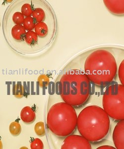 2010 crop all kinds of canned tomato puree condiment