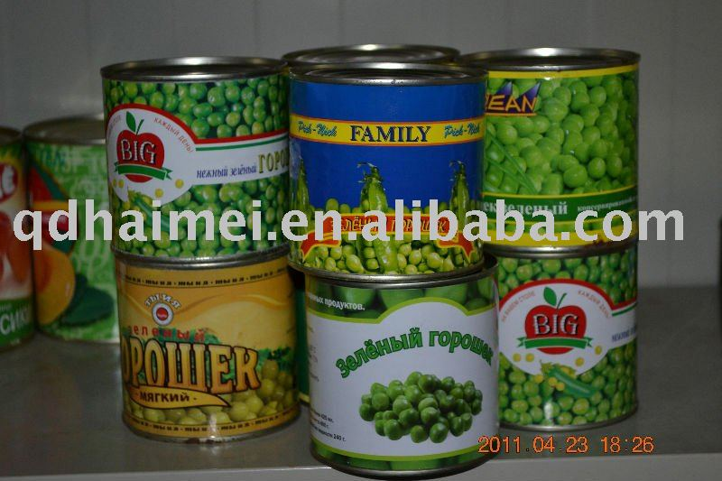 canned green bean from china