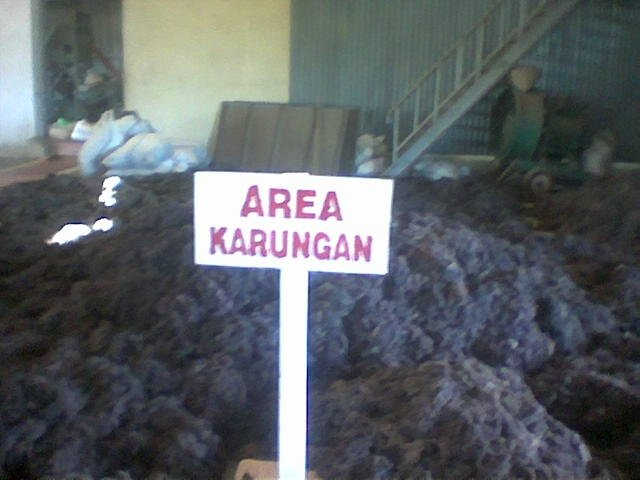 Sell Gracilaria, Eucheuma Spinosum And Eucheuma Cottoni Seaweeds