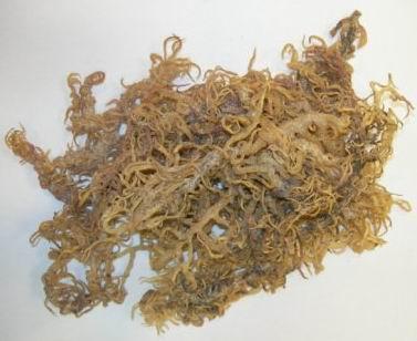 Dried Seaweeds (Eucheuma Cottonii)