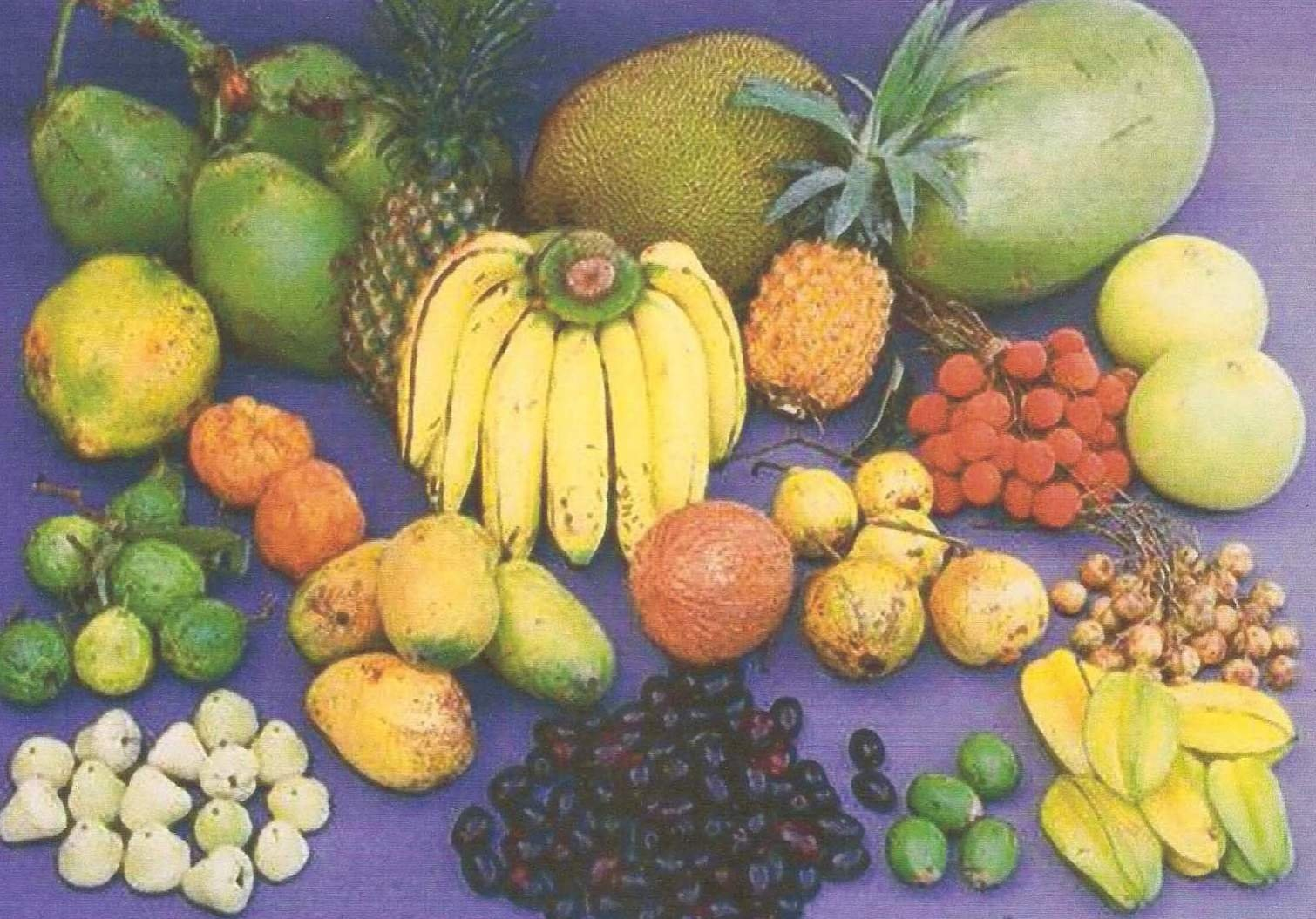 desktop bangladesh fruits pictures - photo #8