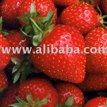 Strawberry &Frozen Strawberry