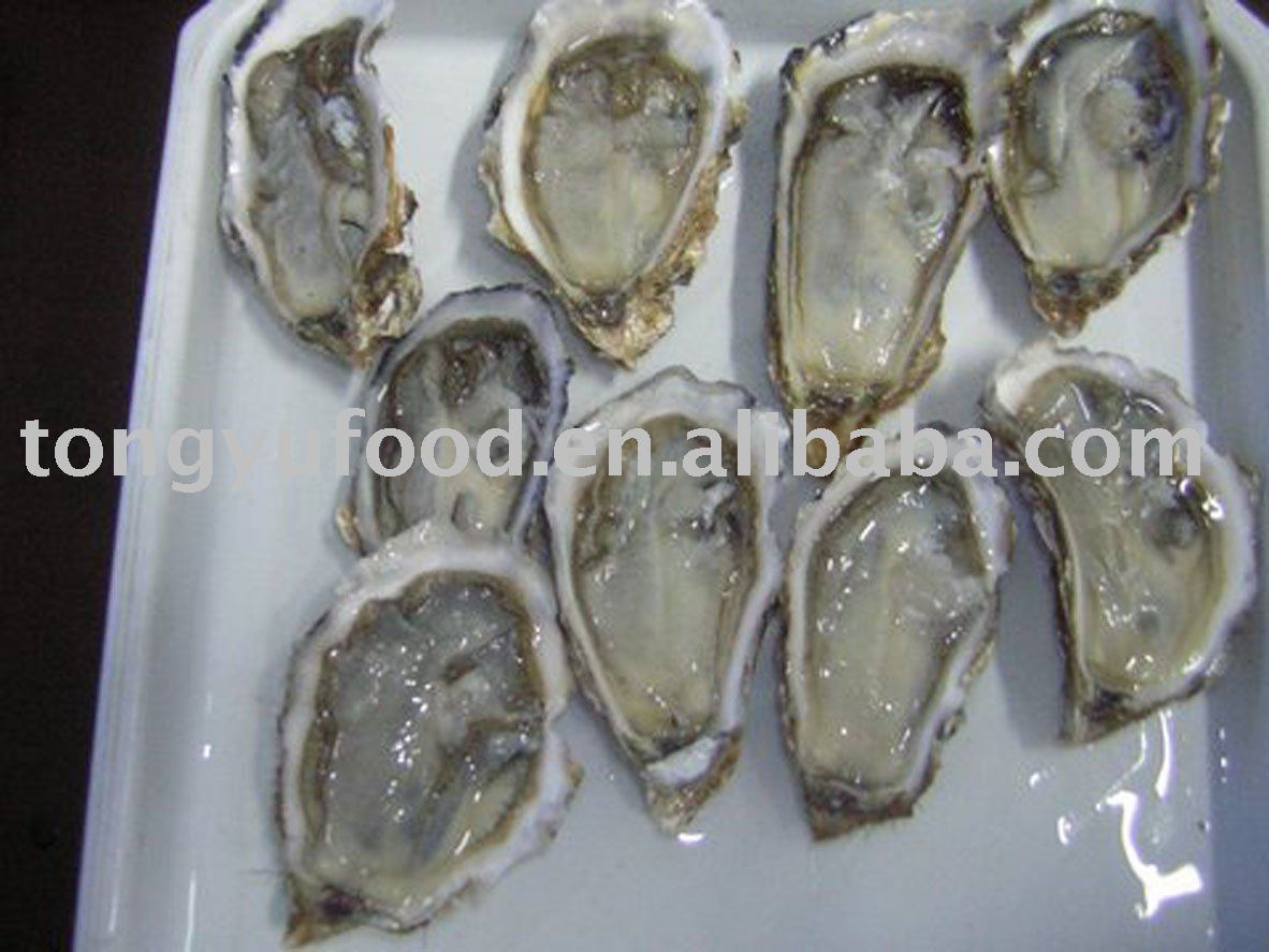 how to cook frozen oyster meat