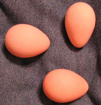 Hatching  Guinea Eggs
