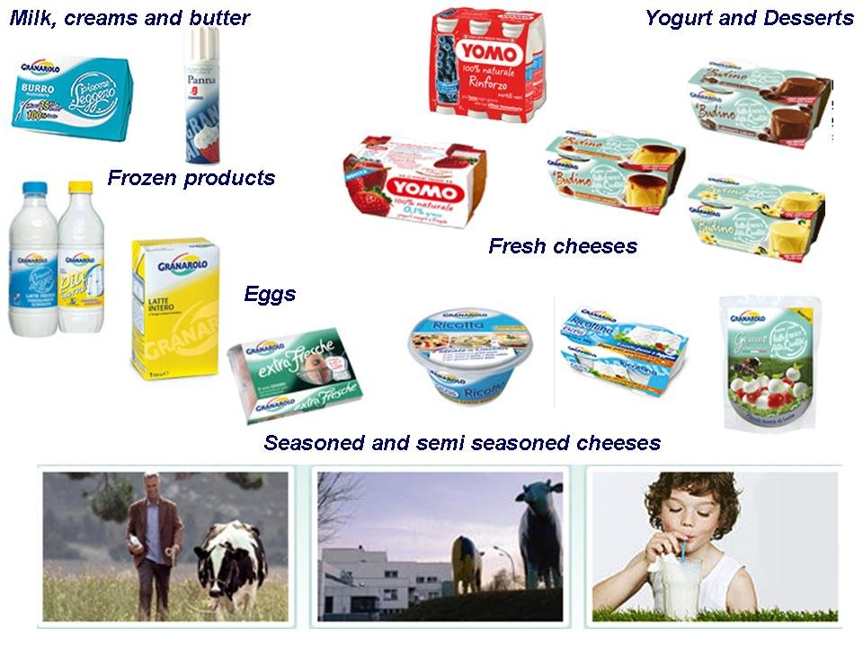 milk and dairy products essay Classification of dairy products product description classification acidified half -and -half 1 fluid milk products: acidophilus 1 concentrated 1.