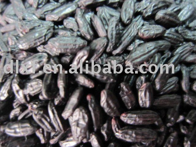 Steamed/parboiled  black rice good quality