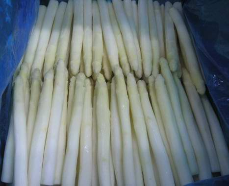 frozen white asparagus tips products,China frozen white asparagus tips ...