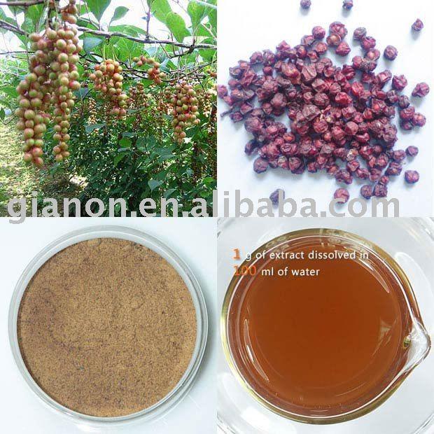 Schisandra fruit  juice   concentrate  powder
