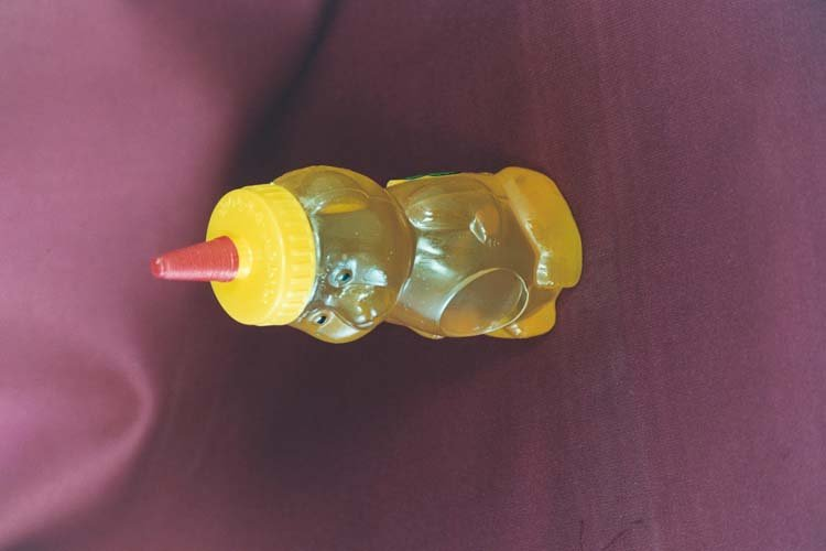 Honey Plastic Bear