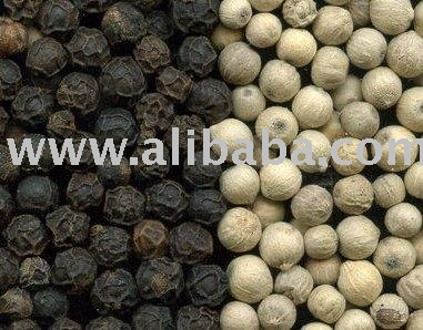 Quality Black Pepper and  White Pepper for sale