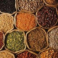 Indian grain