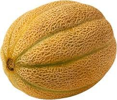 Melon (honey)