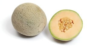 Melon products,Egypt Melon supplier