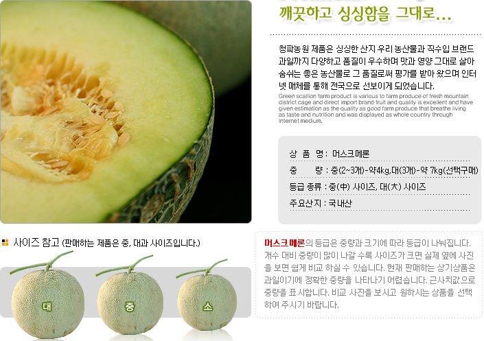 Korea Musk Melon