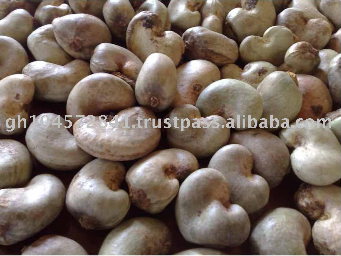sell raw cashew nuts from gambia product name sell raw cashew nuts ...