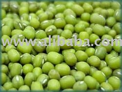 Good quality  Green Mung Beans