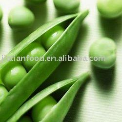 frozen green peas,iqf peas
