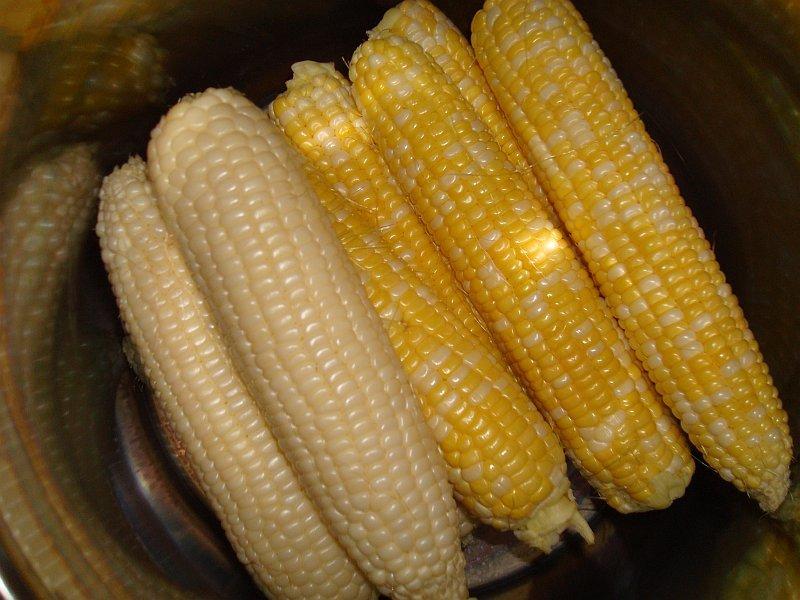 Yellow Corn And White