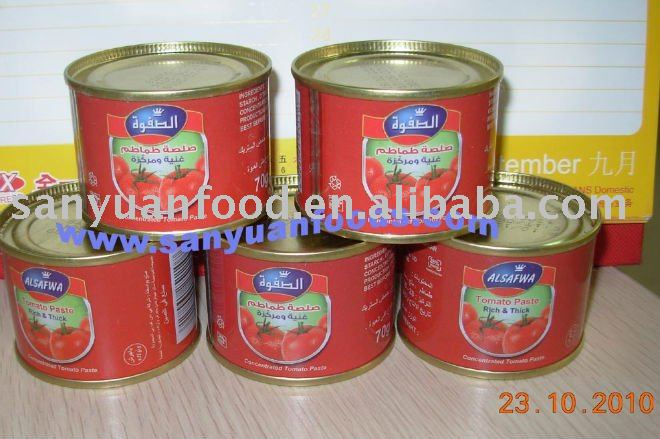 premium quality-canned tomato paste 70g