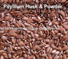 Psyllium Plantago