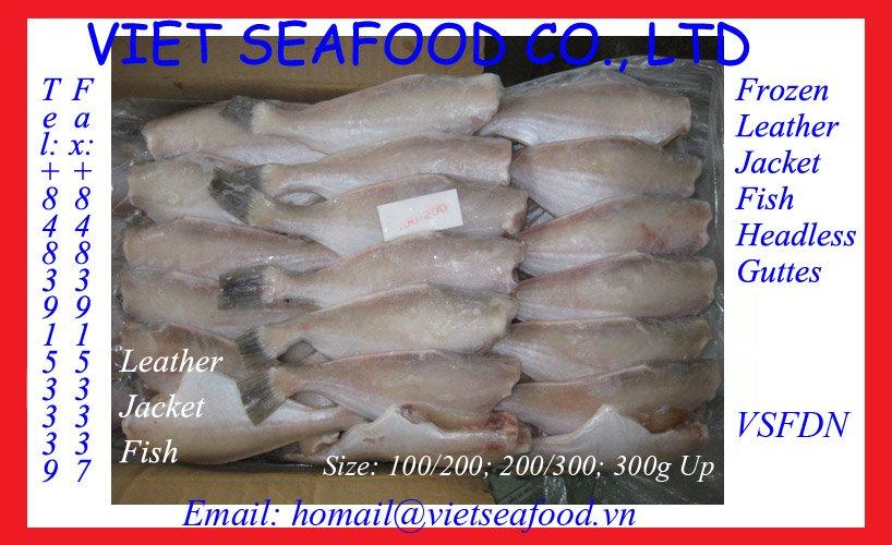 Leather jacket fish recipe