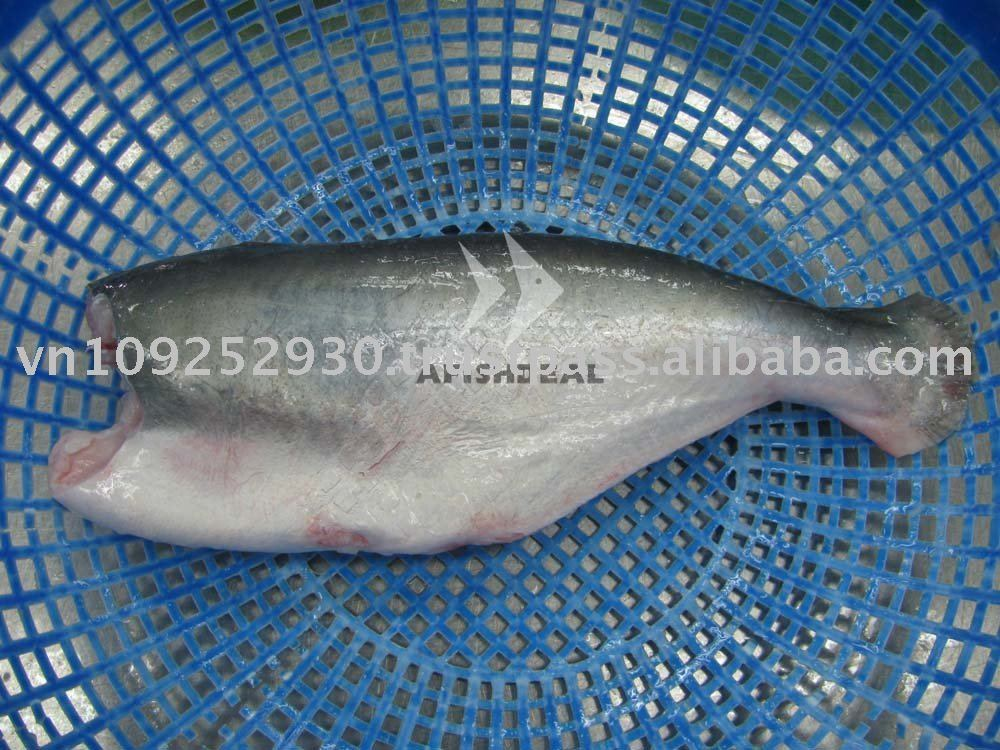 Frozen pangasius basa catfish swai fish seafood whole for What is swai fish
