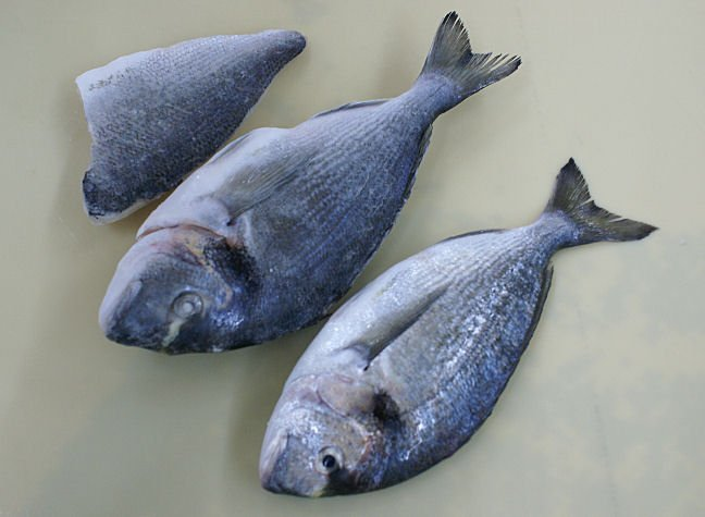 Fresh seabass fillet boneless v cut products turkey for Turkish sea bass recipe