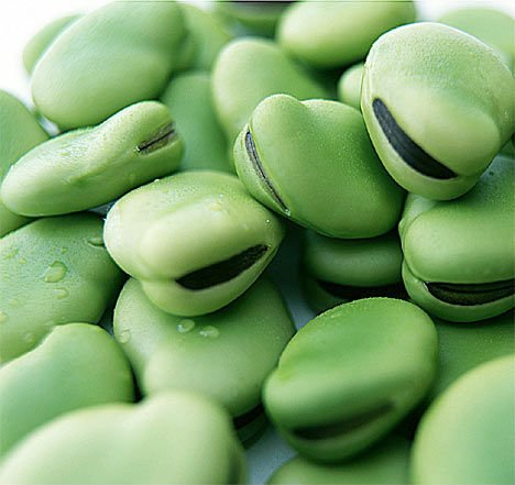 broad beans