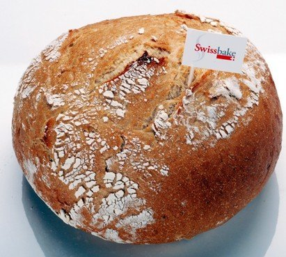 German Farmer  Bread (Bauernbrot)