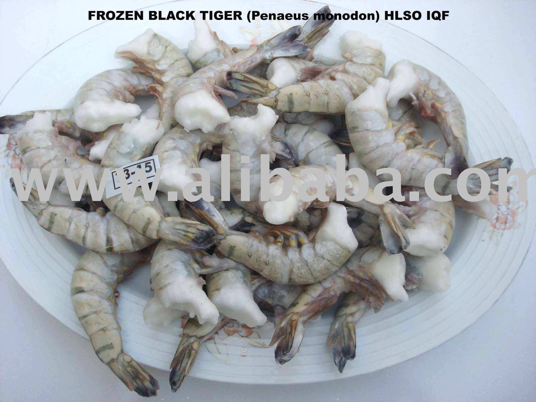 BLACK TIGER(PENAEUS MONODON) HLSO IQF SHRIMP