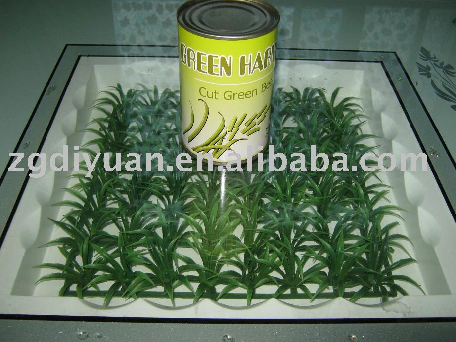 how to store fresh cut green beans