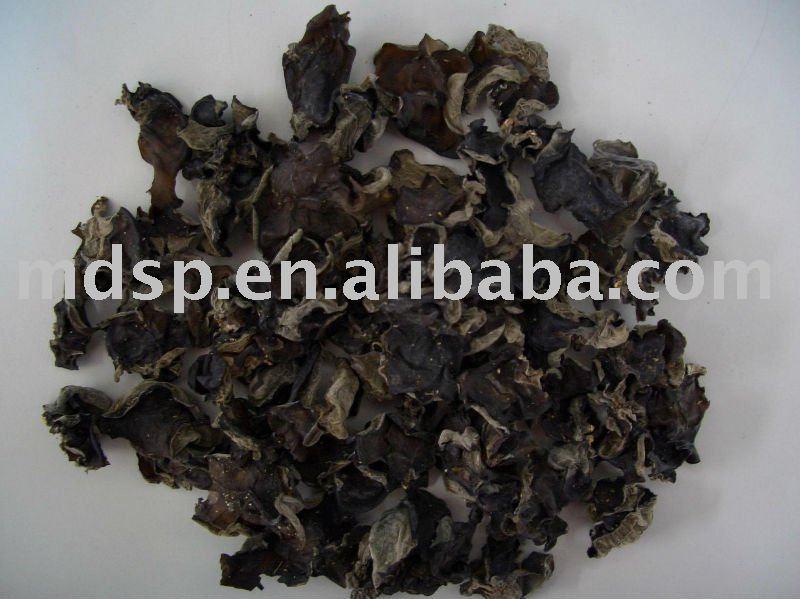 best quality black fungus mushroom