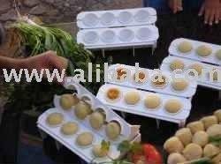 Fabrica de Coxinhas com 32 Formas food