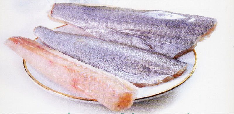 Blue whiting fish suppliers exporters on for Whiting fish picture