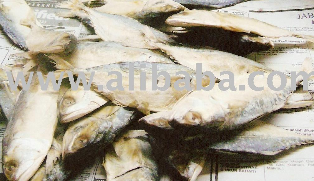 Dried fish snack salted and dried horse mackerel products for Dried salted fish