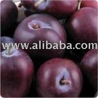 Fresh Plums For Sale
