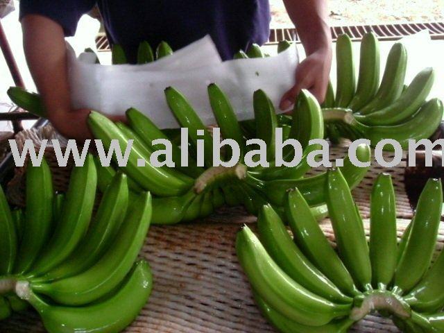 Fresh Quality Cavendish Bananas