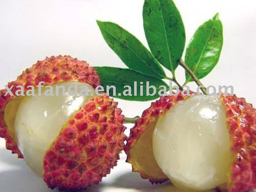 Litchi fruit Powder