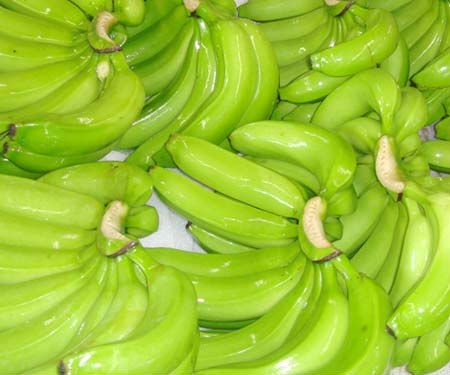 FRESH GREEN CAVENDISH BANANA(GRADE 'A""