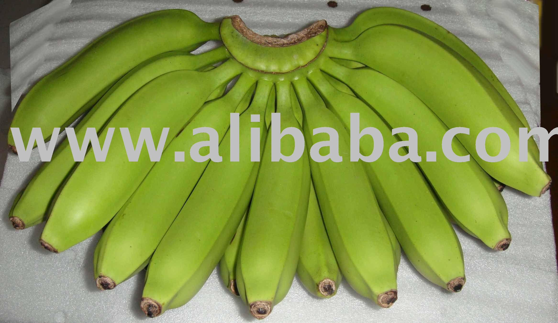 Philippine Fresh Green Cavendish Banana