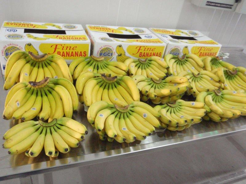 Fine Bananas